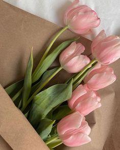 Spring Aesthetic, Flower Aesthetic, Luxury Flowers, Flower Phone Wallpaper, Flowers Nature, Red Roses, Beautiful Flowers, Instagram, Pictures