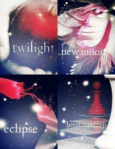 twilight and the twilight saga image