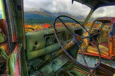 Simply beautiful. abandoned  trucks,Yukon territory Canada.