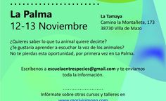 Iniciación a la telepatía con animales en La Palma