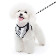 Suit 'n Tie Dog Harness