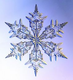 Snowflakes are ice-crystals, a particular form of water ice .Ice-crystals are appear as clear glass but more fragile. Several factors affect snowflake formation. Snowflake Images, Snowflake Tattoos, Snowflake Stencil, Simple Snowflake, Snowflake Designs, Fotografia Macro, Ice Crystals, Things Under A Microscope, Snow And Ice