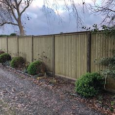 A Jacksons Fencing Tongue and Groove Wooden Fencing Installation in Shropshire. Garden Fence Paint, Garden Gates, Jacksons Fencing, Landscape Design, Garden Design, Townhouse Garden, Garden Screening, Front Fence, Fence Landscaping
