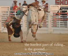 Friday Friday | Cowpoke Corner Kennels and Ranch, cowboy, riding, bucking horse rodeo
