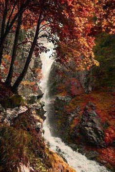 Doğa Güzellik