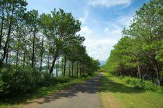Biển Hồ, Pleiku, Gia Lai  #Travel #Vietnam #GiaLai