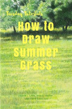 How to Draw Summer Grass