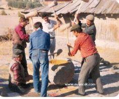 Dibek Taşı,Erdemli Köyü