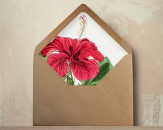 Hey, I found this really awesome Etsy listing at https://www.etsy.com/listing/174000410/hibiscus-envelopes-diy-hawaii-wedding