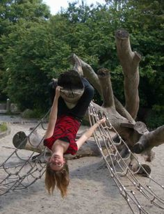 Fallen tree as climbing frame