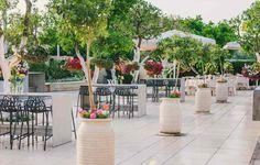 מתחם גן האירועים המדהים של ויה בלב פרדסים. הצבעים המהפנטים, הצמחייה הירוקה והעשירה במיקום המושלם של ויה VIA בנס ציונה.