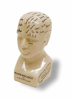 """Porcelain Phrenology Head - Small POR-37843-C by D. Lawless. $9.50. A small porcelain head with black lettering. The glazing is checked in an effort to make it look old. PHRENOLOGY """"For thirty years I have studied cranial and living heads form all parts of the world, and have found in every instance that there is a perfect correspondence between the conformation of the healthy skull of an individual and his known characteristics. To make my observations available I ..."""