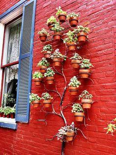 Adorable vertical garden!