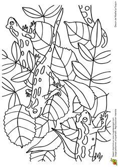 98 Meilleures Images Du Tableau Coloriages Coloring Pages For Kids