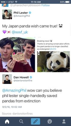 Phil is such an angel bean, he wished pandas would no longer be extinct and we d. Phil is such an A Thousand Years, Dan And Phill, Phil 3, Danisnotonfire And Amazingphil, Cat Whiskers, Tyler Oakley, Another Anime, Phil Lester, Markiplier