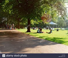 Download this stock image: GB  LONDON  ST JAMES S PARK - ACXT9H from Alamy's library of millions of high resolution stock photos, illustrations and vectors.