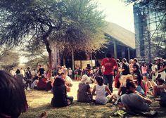 Oppikoppi 2014 <3 Concert, Concerts
