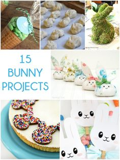 Great Ideas -- 15 Bunny Projects!