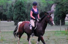 Malin and Pippin- good article for those of us that over think the canter