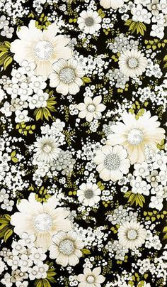 daisies // retro // black background