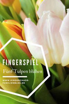 Classroom, Super, Spring, Plants, Dolphins, Crib Spring, Kids Poems, Plant, Squad