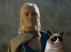 #Khaleesi #cat #grumpy #GOT #Daenerys
