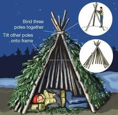 Teepee: As shown in the illustration above, you can lash three seven-foot logs tightly together on one end. Then insert and tie a dozen or more poles to this tripod and start weaving in the branches. If necessary, you can brace the structure on the ground by piling up stones or rocks in a circle around it.