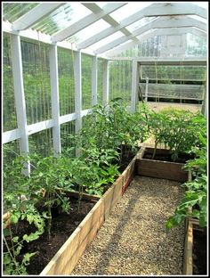 Selection of Style for your DIY Greenhouse - Are you planning to construct a backyard greenhouse? It is really not a difficult thing to do, but for this you must have some good plan to build on. Diy Greenhouse Plans, Backyard Greenhouse, Greenhouse Wedding, Cheap Greenhouse, Greenhouse Plants, Diy Small Greenhouse, Greenhouse Shelves, Greenhouse Vegetables, Portable Greenhouse