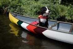 Walter in our new canoe. http://abitibico.ca/en/abitibi-x-norquayco