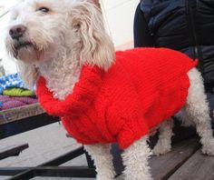 Dog clothing Red knitted Jumper/Top for Extra by RainbowPetShop:https://www.etsy.com/listing/216869291/dog-clothing-red-knitted-jumpertop-for?ref=listing-shop-header-3