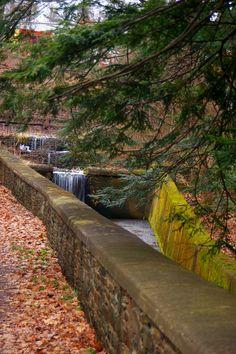Ross Park, Binghamton NY