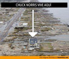 Chuck Norris vive aquí.