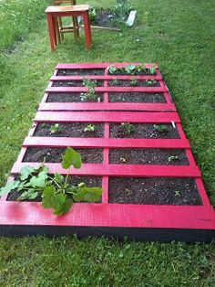 painted pallet garden.  This is a great idea, you can step easily between the plants and it makes harvesting easier plus you could do make a patio out of pallets between the garden rows.