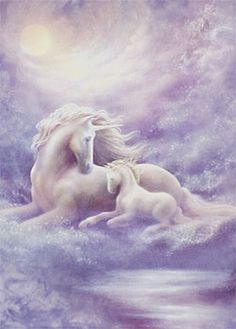 Fantasy Animals images Rainbow Unicorns wallpaper and background . Unicorn And Fairies, Unicorn Fantasy, Unicorns And Mermaids, Unicorn Horse, Unicorn Art, Rainbow Unicorn, Baby Unicorn, Rainbow Baby, Magical Creatures