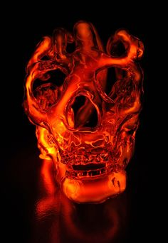One of a series of neon glass skulls, by Portland artist, Eric Franklin, lit internally by ionized neon, krypton, and mercury.
