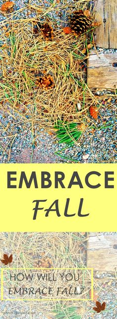 How Will You Embrace Fall?  |Fall is upon us!  I've listed the ways that I'm going to embrace Fall this year.  There are always those activities we love in a season.  What are yours?  http://www.themultitaskingmissus.com/how-will-you-embrace-fall/?utm_campaign=coschedule&utm_source=pinterest&utm_medium=The%20Multitasking%20Missus&utm_content=How%20Will%20You%20Embrace%20Fall%3F