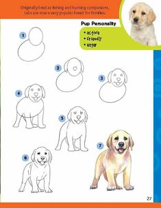 learn how to draw step by step - Bing images Doodle Drawings, Art Drawings Sketches, Cartoon Drawings, Easy Drawings, Animal Drawings, Drawing Skills, Drawing Lessons, Drawing Techniques, You Draw