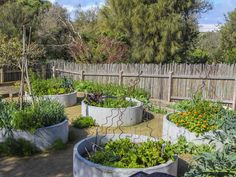 fiona brockhoff / karkalla gardens, sorrento mornington peninsula