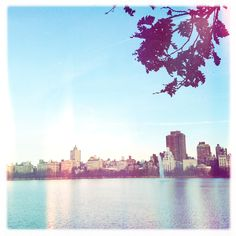 Jacqueline Kennedy Onassis Reservoir, Central Park Jacqueline Kennedy Onassis, Central Park, New York Skyline, River, Outdoor, Outdoors, Outdoor Games, The Great Outdoors, Rivers
