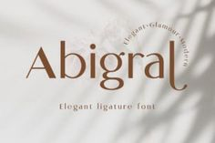 Abigral is a minimalist sans serif font created with geometric shapes and fancy double-strokes letterforms. Abigail is designed in normal...