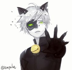 Image de miraculous ladybug, Adrien, and chat noir