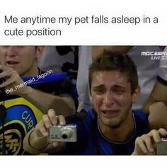 Me anytime my pet falls asleep in a cute position