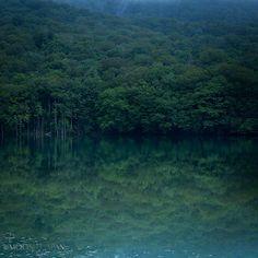 THE SECRET SWAMP - Tsutanuma Swamp, Towada City, Aomori Prefecture, Japan   青森県十和田市 蔦沼