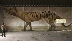 tasmanian tiger alive and well.
