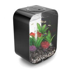 biOrb Life 15 - 4 Gallon Freshwater Acrylic Aquarium Kit - Black (P1500-C-BLK-US)