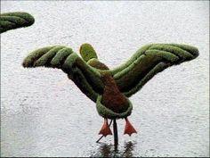Arte topiario - Jardineria