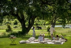 Formerly the family home of Singita founder Luke Bailes' grandfather, Singita Castleton is an exclusive use lodge set within acres of private reserve. Field Guide, African Safari, Maine House, Rustic Chic, Lodges, South Africa, Dolores Park, Cottages, Farmhouse