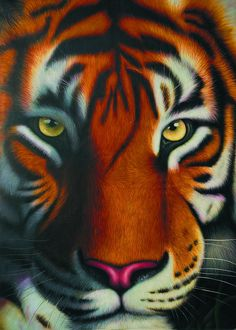 Find More Painting & Calligraphy Information about High Quality Tiger Canvas…