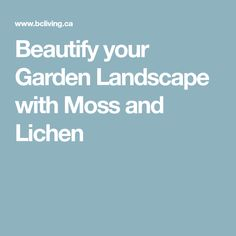 Beautify your Garden Landscape with Moss and Lichen