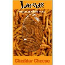 Larvets from Hotlix